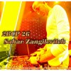 2B Continued Podcast 26 - Sahar Zangilevitch Israeli Djs Nightlife Tel Aviv